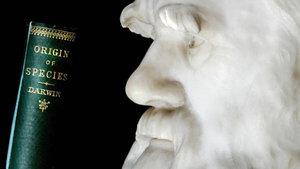 Evrim Teorisi ve Darwin müfredattan çıktı