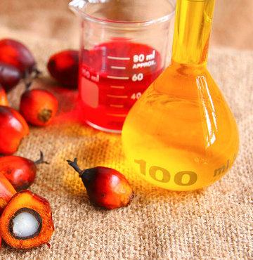 Palm yağı kullanılan ürünler araştırılacak