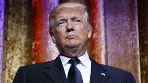 """Yeni keşfedilen güve türüne """"Trump"""" adı verildi"""