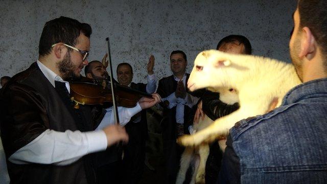Bursa'da ahırda sıra gecesi düzenlendi