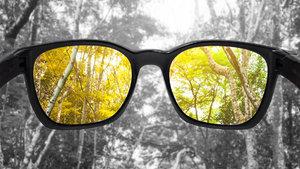 Renk körlüğüne deva gözlük