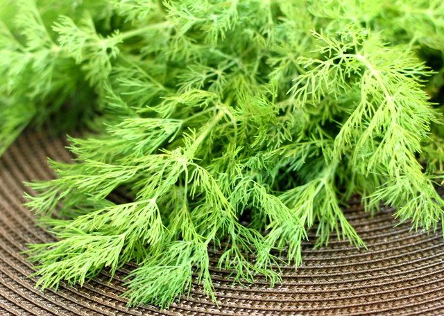 Beslenmenize daha çok yeşillik katın!