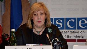 AGİT'ten ABD yönetimine basın özgürlüğü çağrısı