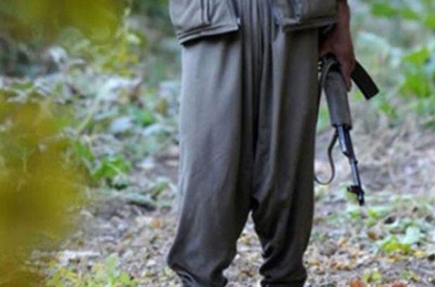 PKK/KCK'nın sözde bölge sorumlusu yakalandı