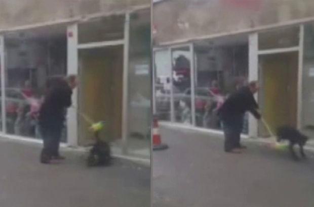 Sokak köpeklerine sopayla dayak kamerada