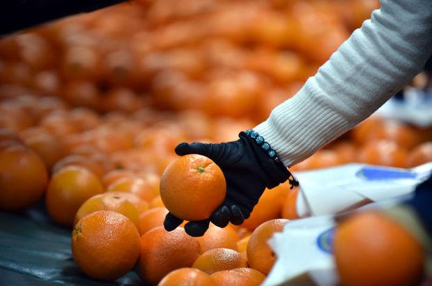 Yaş meyve sebze ihracatçıları hedef büyüttü