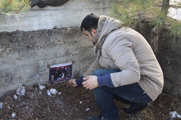 Çankırı'da Uzun ailesi ölen kedilerini aile mezarlığına gömdü