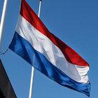 HOLLANDA'DAKİ BAZI CAMİLERİN KAPILARI İBADET ESNASINDA KİLİTLENECEK