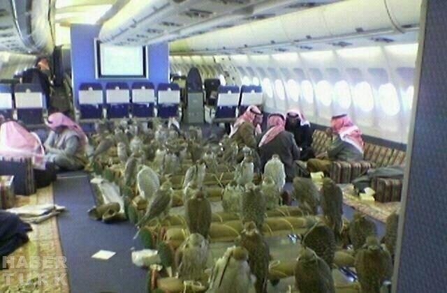 Arap prens şahinleri için 80 bilet aldı