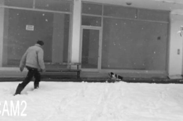 Giresun'da Belediye işçisi montunu çıkartıp üşüyen köpeğin üzerine örttü