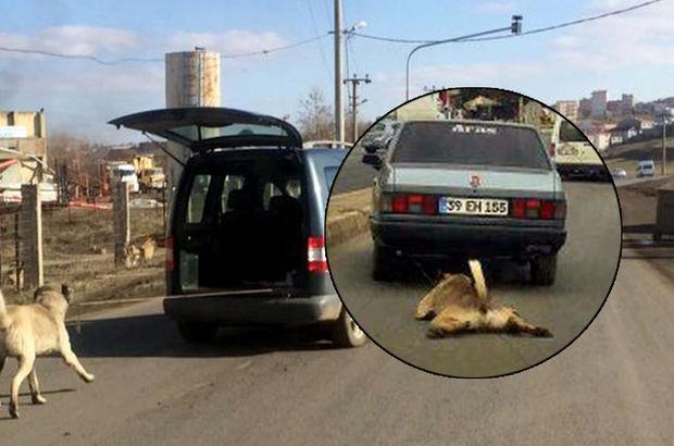 Çorlu'da arabaya bağlanan köpek çekilerek götürüldü