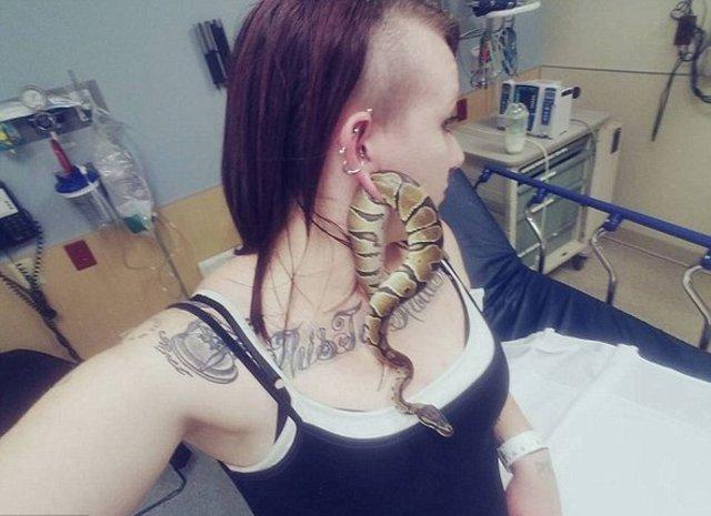 Kulağına yılan sıkışan kadın hastaneye kaldırıldı