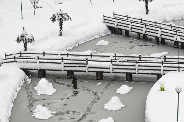 Trabzonlu işçinin buzlu gölette kuğu kurtarma mücadelesi