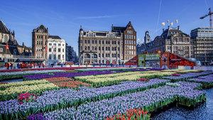 Amsterdam Hollanda'dan ayrılabilir