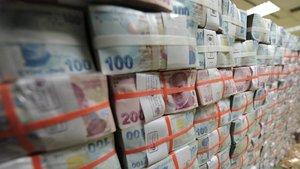 THY ve Halkbank hisseleri Varlık Fonu'na devredildi