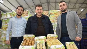 Suriye'den Türkiye'ye gelen 3 mühendis 'incir' patronu oldu