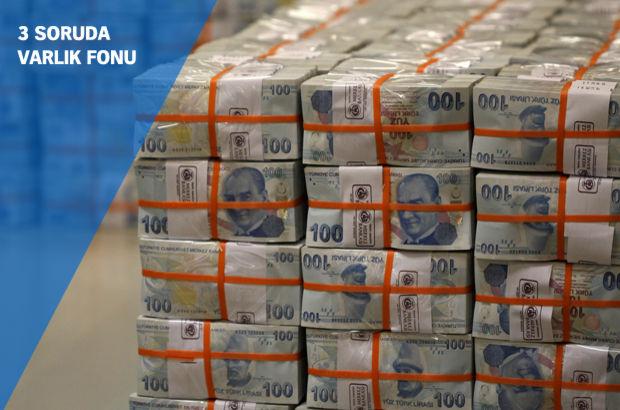 Türkiye Varlık Fonu  THY Halkbank