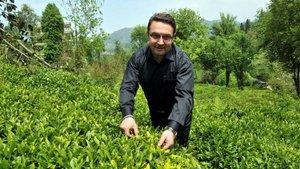Türkiye organik çay üreten tek ülke olacak
