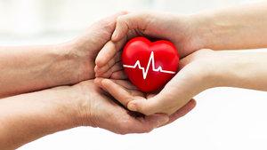 Organ nakli için Türkiye'ye gelen hasta sayısında iki kat artış oldu!