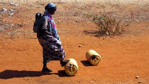 Kenya'da kuraklık nedeniyle ulusal afet ilan edildi