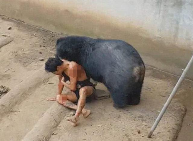 İnsanlara saldıran hayvanlar korkuttu