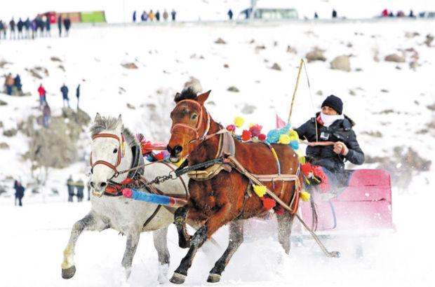Çıldır Kristal Göl Şenliği'nde atların buz dansı