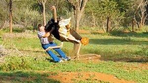 İşte dehşete düşüren hayvan saldırıları