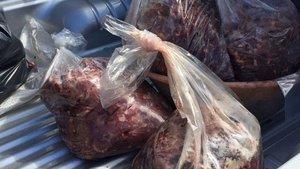 Aydın'da 200 kilo kaçak domuz eti yakalandı