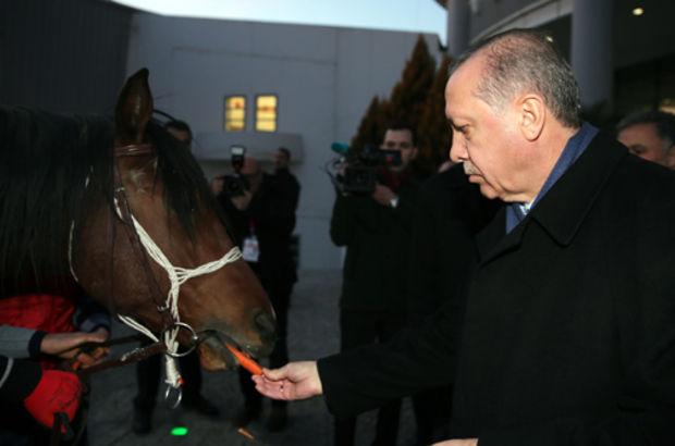 Cumhurbaşkanı Erdoğan'a at ve bağlama hediye ettiler