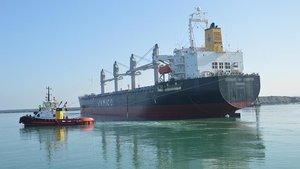 Vietnam'da gemi şirketi yöneticilerine idam