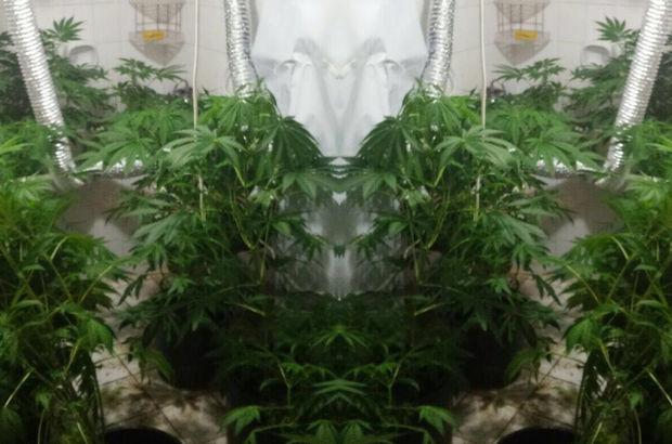 Ümraniye'de uyuşturucu operasyonu