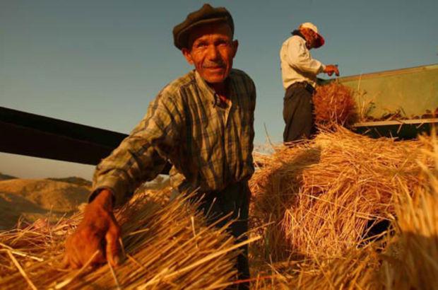 Çiftçilere müjde! O ödeme bugün başlıyor