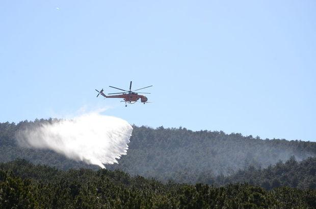 Ataşehir'de ormanlık alanda yangın