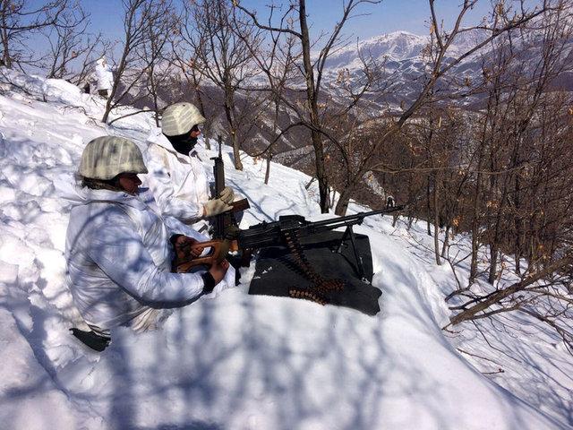 Diyarbakır ve Bitlis'te terör operasyonu