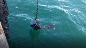 Ordu'da polis ekipleri denizden çelik kasa çıkardı