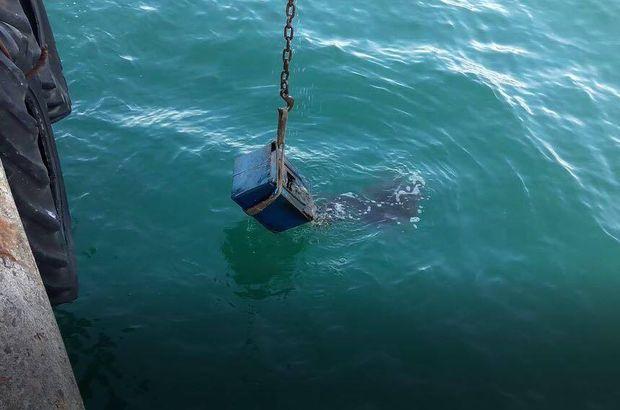 Ordu'da polis denizden çelik kasa çıkardı