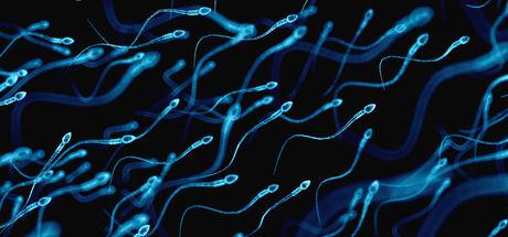 Telefonla konuşmak sperm kalitesini bozar mı?