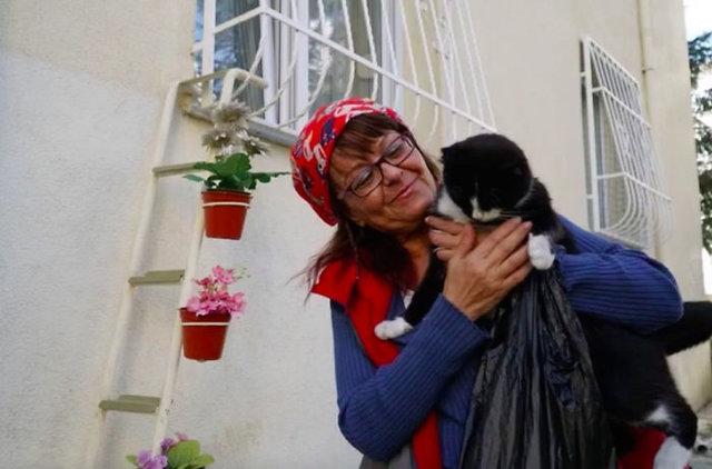 Tüm dünya Tekirdağlı hayvanseverin kedi merdivenini konuşuyor!