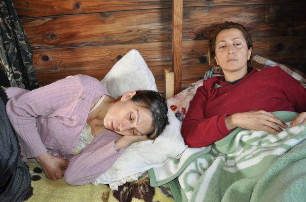 Bartın'da açlık grevindeki hayvanseverler yatağa düştü