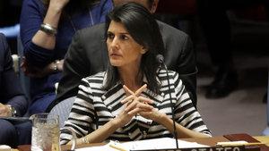 ABD'den Filistin'e çağrı: 'Çözümü BM'de aramayın'