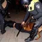 """ÇAVUŞOĞLU, HOLLANDA POLİSİNİN SKANDAL GÖRÜNTÜLERİNİ PAYLAŞTI: """"WİLDERS'IN KÖPEKLERİ"""""""