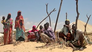 Somali'de salgın hastalık uyarısı