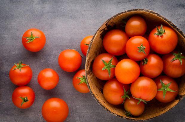 rusya domates yaptırım