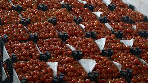 Mehmet Şimşek: Alınan önlemler meyvelerini veriyor