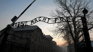 Auschwitz'de çıplak protesto!