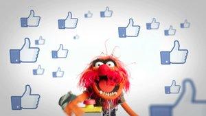 Facebook yorumlarında GIF dönemi