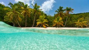 Virgin Adaları'na tatile giden üste para alıyor