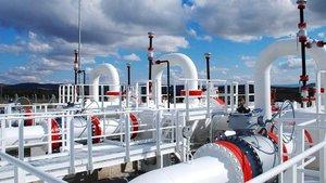 Artvin doğalgaz dağıtım ihalesi sonuçlandı