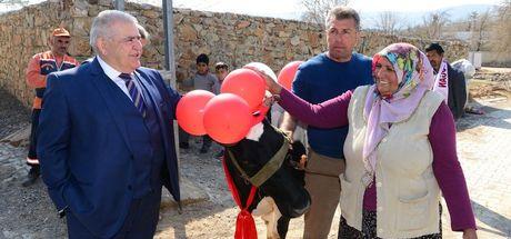 Kahramanmaraş'ta bir kişinin Başbakan'dan inek isteği yerine geldi