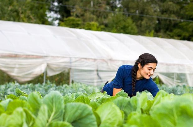 Genç çiftçilere 30 bin TL hibe desteği verilecek